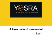 Local commercial 48m² au berge du lac 1